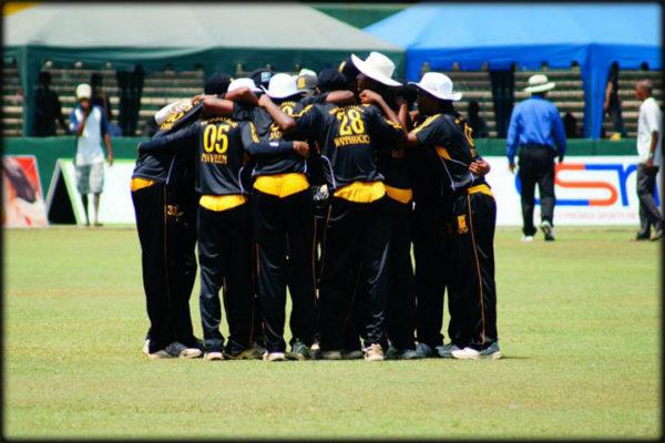 cricket16